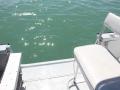 22-Marathon-boat-rental-dive-door