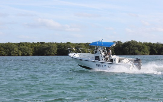 24 foot Boston Whaler boat for rent in Marathon FL Keys