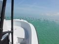 24' FWC Marathon boat rental bow and console